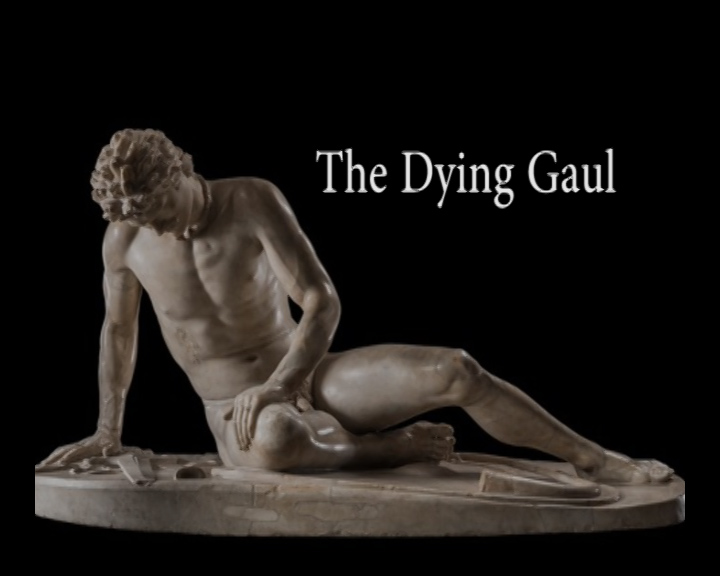 analysis of dying gaul The dying gaul (i) (2005) plot showing all 3 items jump to: summaries (3) summaries the gay screenwriter robert, who is grieving the recent loss of his lover, writes a screenplay based on his biography and tries to sell it to the hollywood producer jeffrey he offers one million dollars for his work, provided changes in the story replacing.